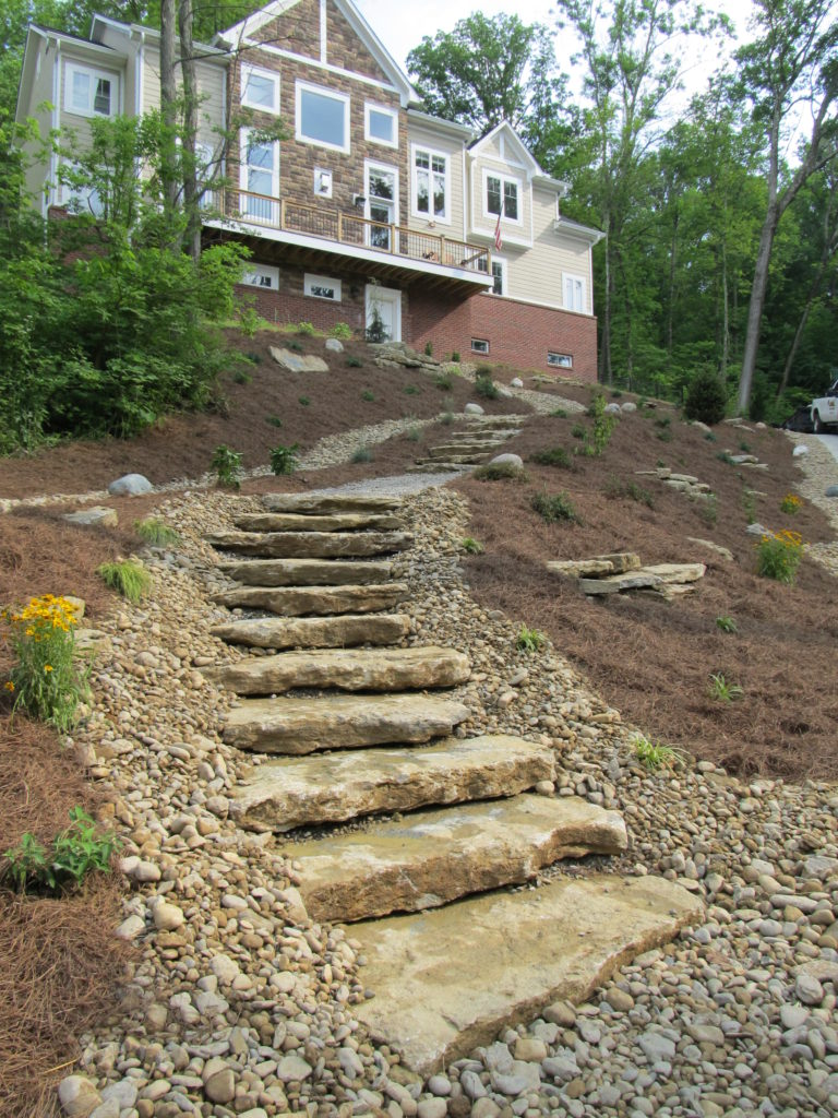 natural_steps